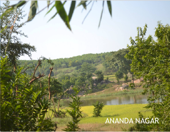 ananda-41