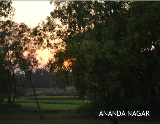 ananda-44